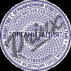 zashchitnaya_pechat_setka_9.png